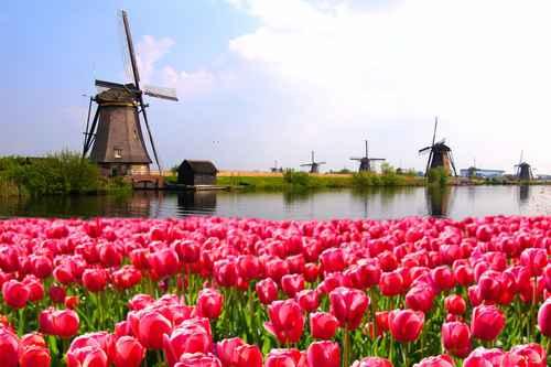 accueil des publics néerlandais en hébergement touristique